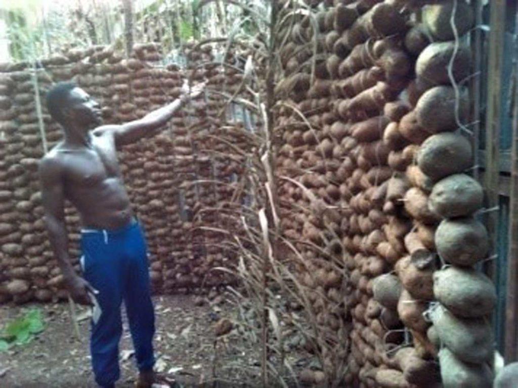 Osok Augustus, farmer, Obubra, Cross river State